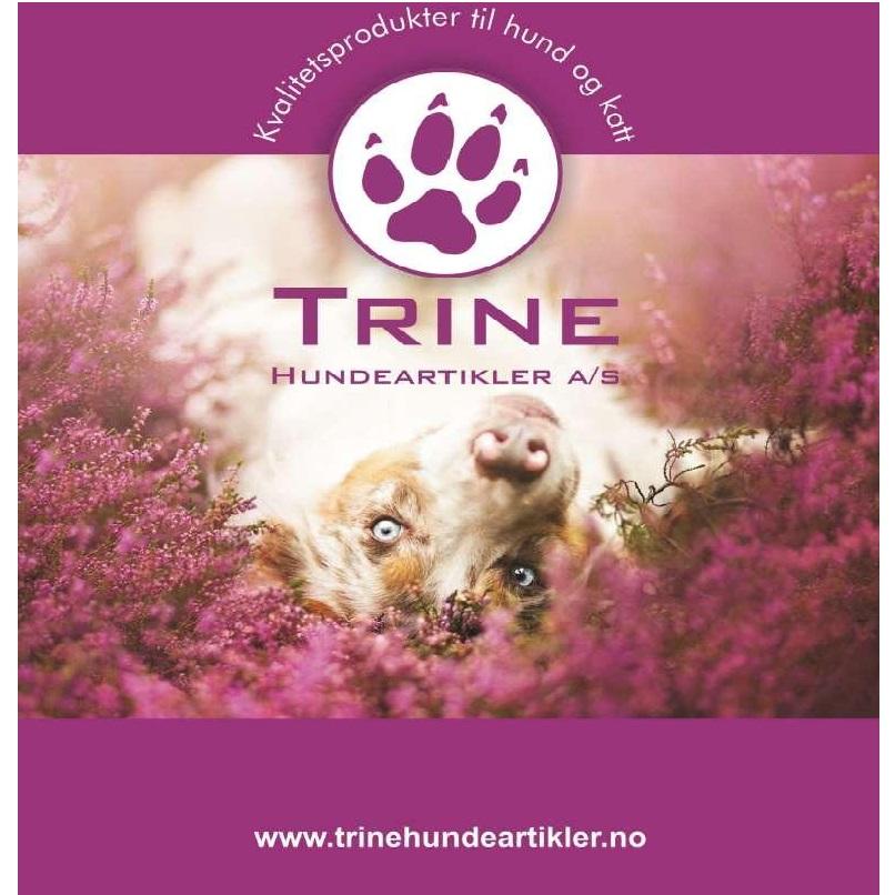 Trine hundeartikler